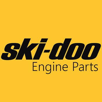 Ski-Doo Engine Parts